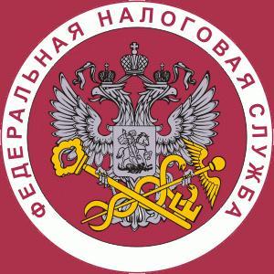 Налоговые инспекции, службы Васильево