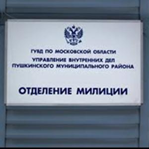 Отделения полиции Васильево