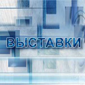 Выставки Васильево